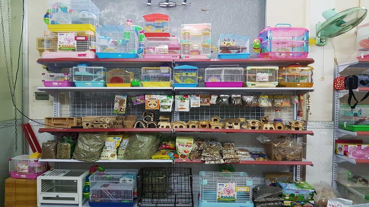 Cửa hàng thú cưng ở Cần Thơ