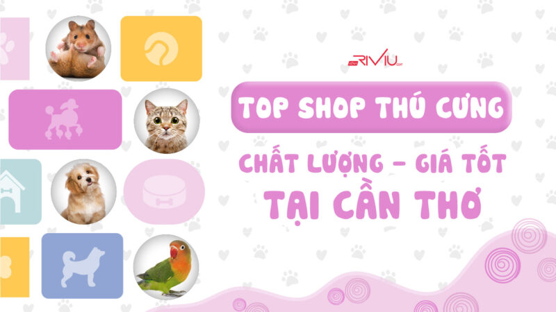 shop-thu-cung-can-tho-800x450.jpg